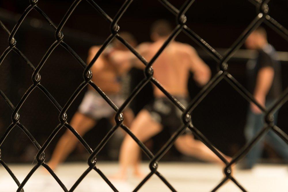 UFC stock